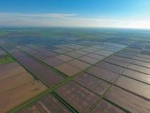 Überschwemmte Reispaddys Landwirtschaftliche Methoden des Anbauens des Reises auf den Gebieten Stockfotos