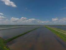 Überschwemmte Reispaddys Landwirtschaftliche Methoden des Anbauens des Reises auf den Gebieten Lizenzfreies Stockbild