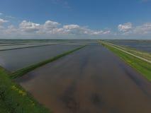 Überschwemmte Reispaddys Landwirtschaftliche Methoden des Anbauens des Reises auf den Gebieten Lizenzfreie Stockbilder
