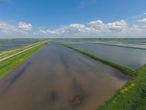 Überschwemmte Reispaddys Landwirtschaftliche Methoden des Anbauens des Reises im f Lizenzfreies Stockbild
