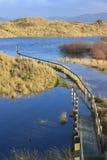 Überschwemmte Sanddünedurchhänge bei Ynyslas Lizenzfreie Stockbilder