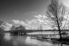 Überschwemmter Fluss Stockbild