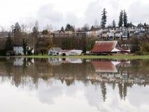 Überschwemmter Fluss Stockfoto