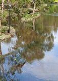 Überschwemmter Park Lizenzfreie Stockfotos