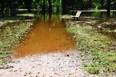 Überschwemmter Park in der Flut Stockfoto
