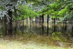 Überschwemmter Park in der Flut Stockbild
