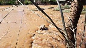 Überschwemmter ursprünglicher Wichita-Wasserfall in Wichita Falls Texas lizenzfreie stockbilder
