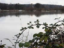 Überschwemmtes Ackerland Stockbild