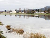 Überschwemmtes Ackerland Stockfoto