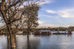 Überschwemmtes Land mit sich hin- und herbewegenden Häusern bei Sava River - neues Belgrad - Lizenzfreie Stockfotografie