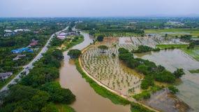 Überschwemmtes landwirtschaftliches Feldland in Nord-Thailand Lizenzfreies Stockbild