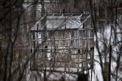 Überschwemmung, überschwemmter Garten Stockfoto