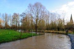 Überschwemmung in Flandern Lizenzfreies Stockfoto