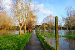 Überschwemmung in Flandern Lizenzfreie Stockfotos
