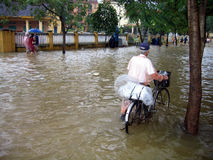 Überschwemmung in Vietnam stockbilder