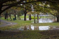 Überschwemmung von Parkland während des Herbstes Stockbilder