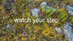 Überwachen Sie Ihren Jobstepp Lizenzfreie Stockfotos