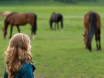 Überwachende Pferde des Mädchens Lizenzfreies Stockbild