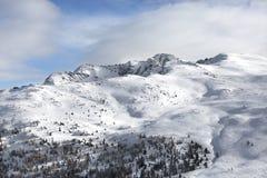 Überwachender Schnee der Frau deckte Berge ab Alpen, Winterlandschaft Makro des grünen Grases Bellamonte, Lusia, Valbona, Dolomit Stockbild