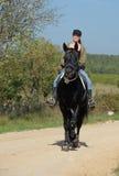 Überwachendes Mädchen und Stallion Stockfotografie
