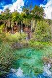Überwucherter See und Wasserfälle Stockbild