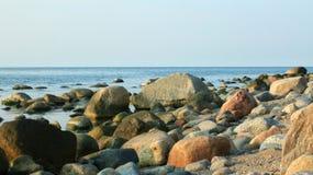 Überwucherter Stein stockbild
