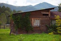 Überwuchertes kleines hölzernes Haus in Altai-Berg Lizenzfreies Stockfoto