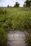 Überwuchertes leeres Lot nach Hurrikan Katrina lizenzfreies stockbild