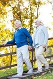 Überzeugte ältere Paare Stockfotos