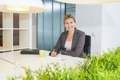 Überzeugte schauende Geschäftsfrau Lizenzfreies Stockfoto