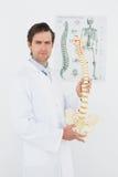 Überzeugter männlicher Doktor, der skeleton Modell hält Lizenzfreies Stockbild