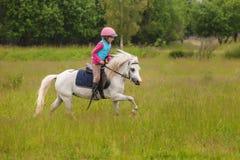 Überzeugtes galoppierendes Pferd des jungen Mädchens Stockbilder