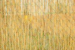 Überzogener Drahtzaun des Strohs im Garten Lizenzfreies Stockfoto