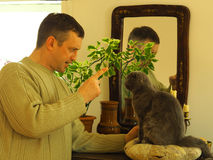 Übung mit Haustieren Stockfotos