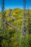 Übungs-Treppe im Sommer Lizenzfreies Stockfoto