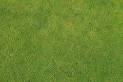 Übungsgrün auf dem Golfplatz - mit Kohlensäure durchgesetzt - Wartungshintergrund Lizenzfreies Stockbild