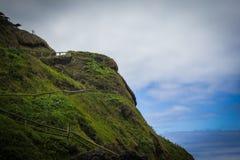 Üppige Abhangspur zum Butterfaß des Teufels im Kap Perpetua, Oregon Lizenzfreies Stockfoto