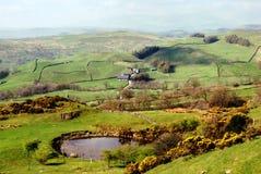 Üppige grüne Landschaft, englischer See-Bezirk Stockbilder