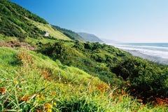 Üppige Küstelandschaft Lizenzfreie Stockfotos