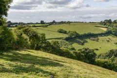 Üppige Landschaft nahe Liskeard, Cornwall Lizenzfreie Stockfotografie