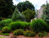 Üppiger Garten Stockfotos