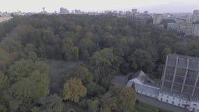 Üppiger grüner Wald auf Hügel, Vogelperspektive, Kameradrehbeschleunigung Mischbäume und Büsche, Spitze, Naturansicht von oben stock video footage