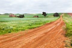 Üppiges Ackerland in Australien Stockfotos