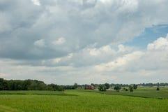 Üppiges Ackerland unter bewölkten Himmeln Stockfotografie
