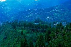 Üppiges grünes lanscape in Yumthang-Tal, Sikkim, Indien stockfotografie
