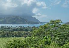 Üppiges Land und blaues Meer stockfotografie