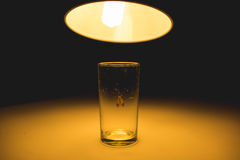 Ćma w szkle z promieniem światła pojęcie Zdjęcie Royalty Free