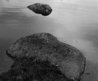 ćpuny jeziorni Obrazy Stock