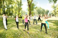 ćwiczący joga grupowego parkowego ludzie Zdjęcie Royalty Free