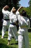 ćwiczeń karate. Obrazy Royalty Free
